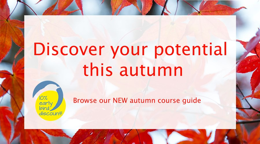 Autumn leaves with a white text bow with the phrase Discover your potential