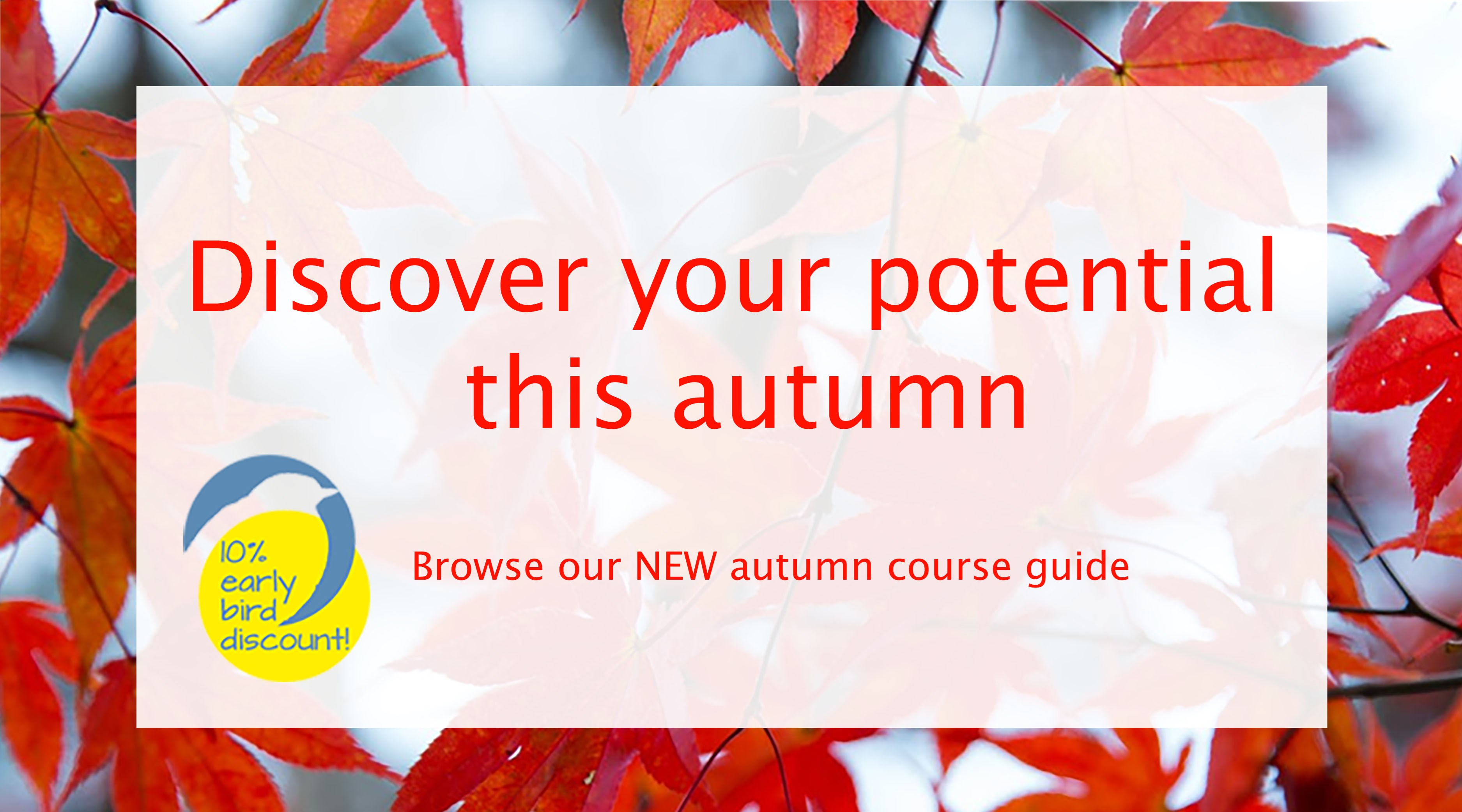 Autumn leaves with a white text box containing Discover your potential this autumn